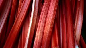 rhubarb-001