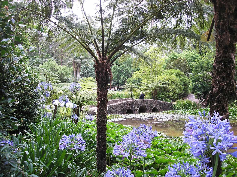 Garden Weddings South East Queensland Garden Ftempo