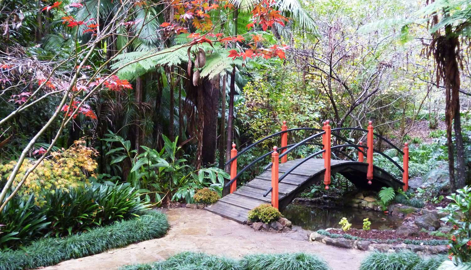 Japanese garden tamborine mountain botanic gardens for The landscape gardener