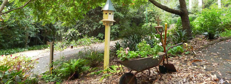 Home Tamborine Mountain Botanic Gardens