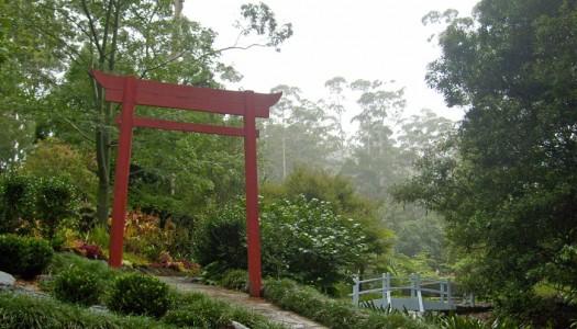 Walkways & Prominent Plantings