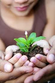 Special Garden activities for Children