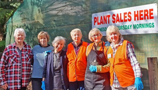 BGANZ Day plant sale – May 30